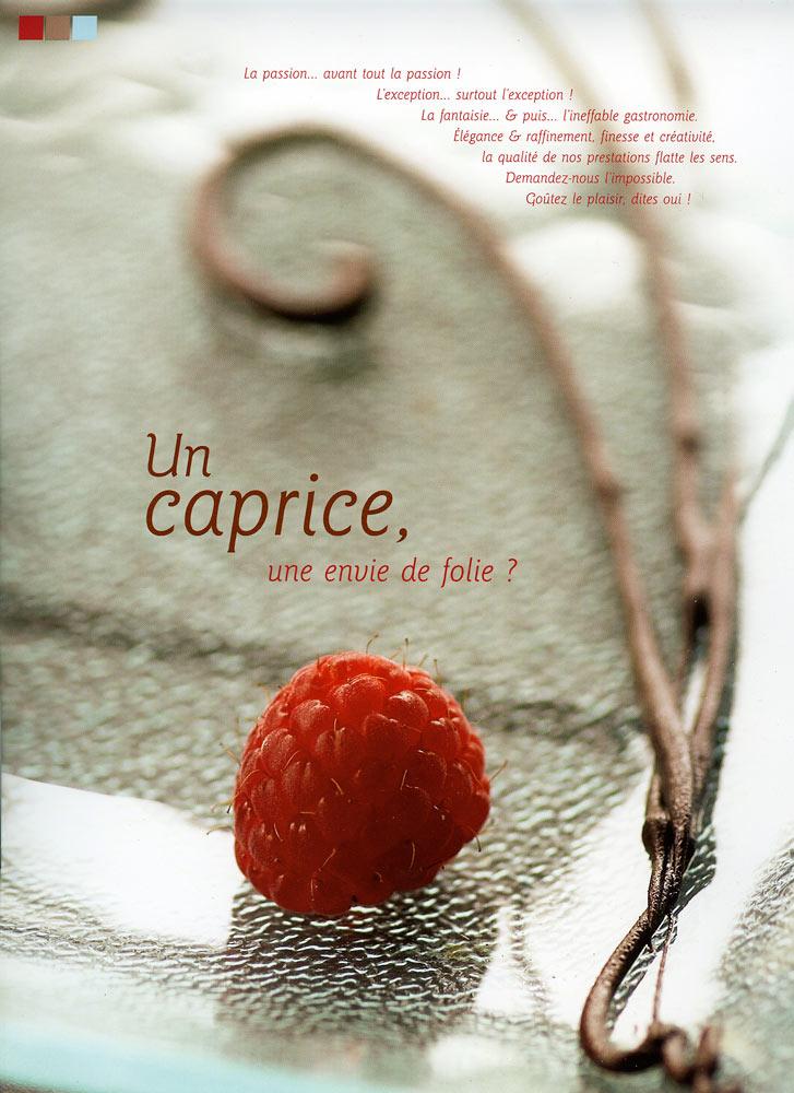 plaquette Kemper gastronomie framboise