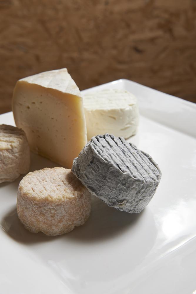 Fromages de chèvre de Solène Larzul