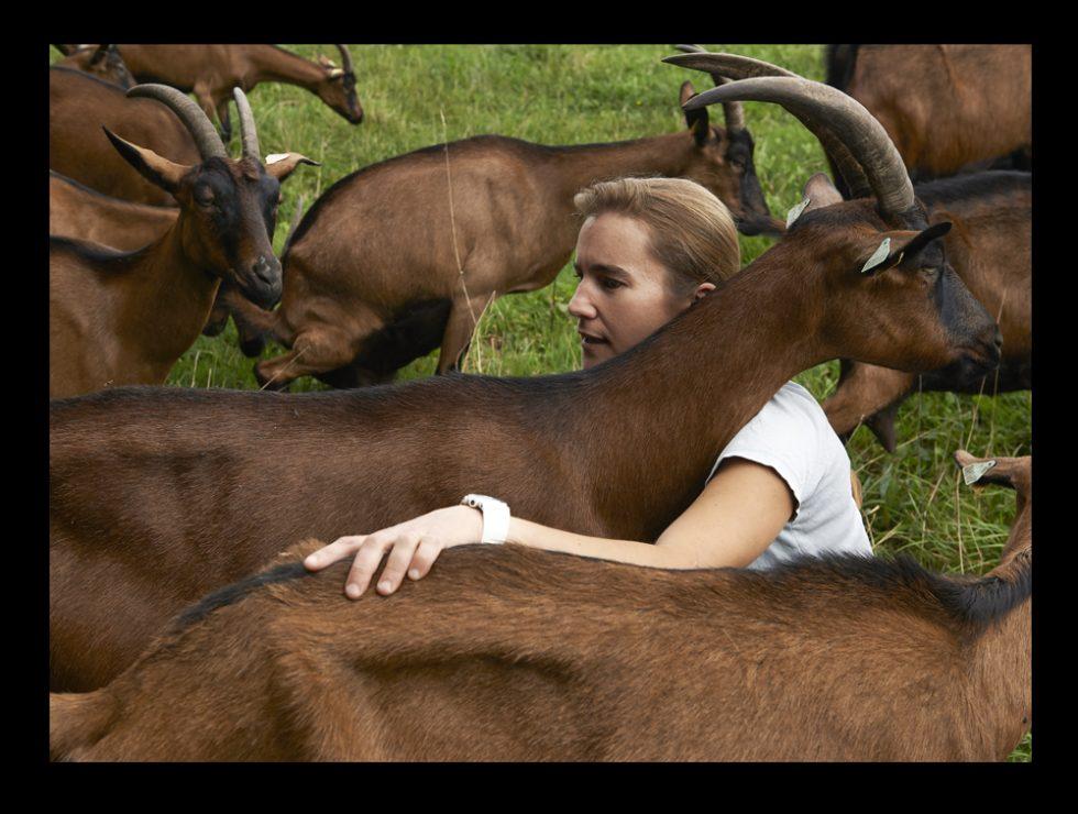 Solène, élevage de chèvres en pays Glazig