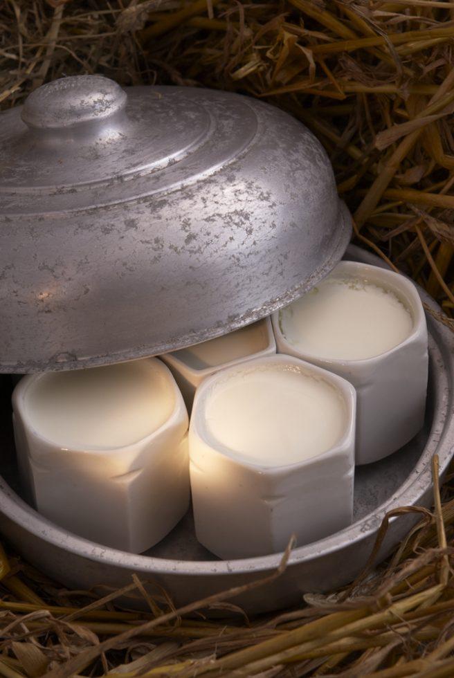 yaourts maison Jacques Thorel